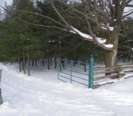 ST-gate